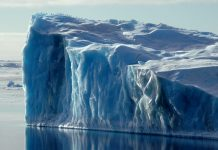 Environmental challenges facing the Polar Regions
