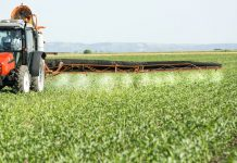 Ban on pesticide could cost farmers £1.6bn