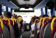 Green MEP calls for free public transport