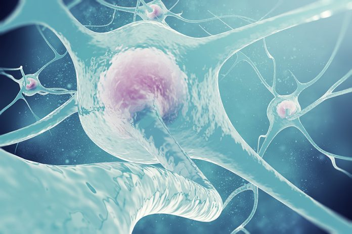 Alzheimer's disease treatment research neuron