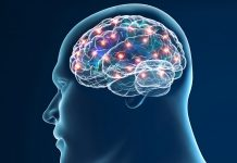 drug development for neurodegenerative diseases concept