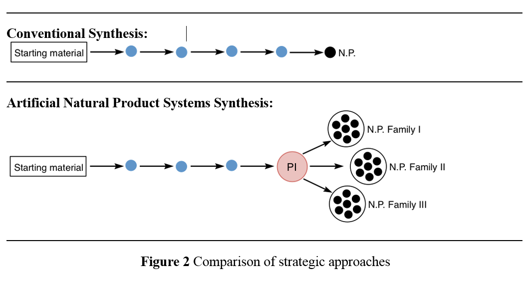 Figure 2: Comparison of strategic approaches