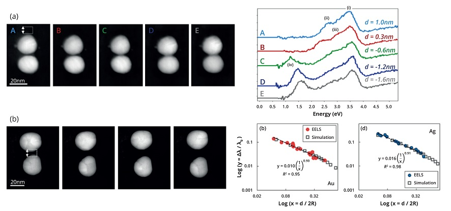 Figure 2: (a) Electron energy-loss spectra probing the surface plasmon resonances in silver dimer nanoparticles at separation distances (d) below 1 nm, revealing the evolution of surface plasmons resonances in a non-classical regime. (b) Electron energy-loss measurement of the surface plasmon resonance wavelength for gold and silver dimers as a function of separation distance. Establishing an accurate scaling of the surface plasmon resonance with distance is highly important for nanometrology applications
