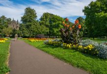 Investment in public parks
