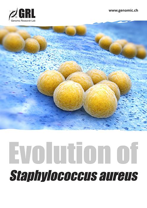 staphylococcus aeurus