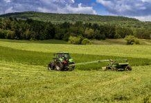intensive farming