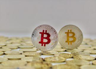 bitcoin offshoot