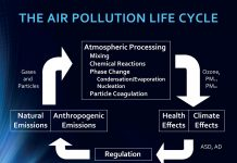 air pollution on the brain