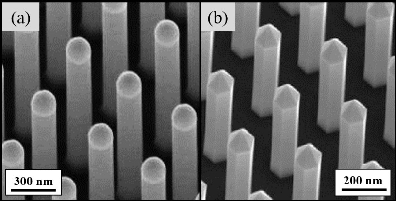 Silicon and Gallium Nitride nanowire