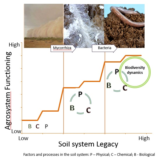 Soil System Lagacy in relation to agriculture