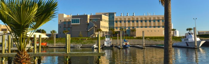 The Laboratory for Oceanographic and Environmental Research (LOER