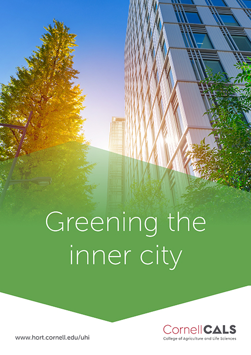 Greening the inner city