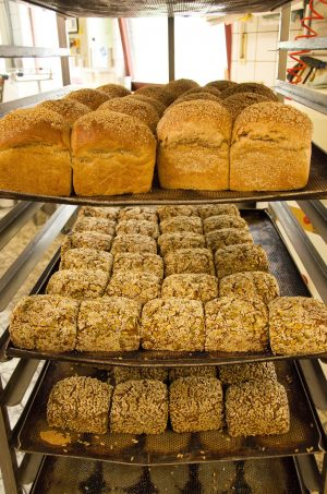Delicious bread using minor cereals offered by the Stolzenberger's Bakery in Germany: spelt bread, 4 Urkorn bread Emmer-Einkorn-Spelt-Rye, Spelt-barley bread with pumpkin and sesame seeds, Whole grain spelt bread with sunflower seeds