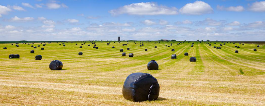 storing silage