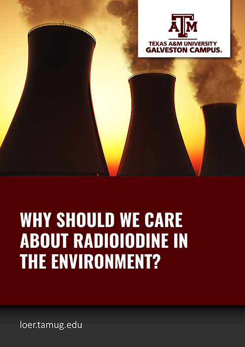 Why should we care about radioiodine in the environment?