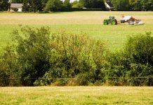 farming scheme