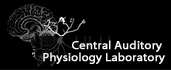 Search Central Auditory Physiology Laboratory