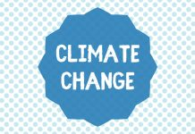 tackle climate change