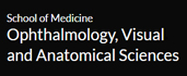 Department of Ophthalmology, Visual & Anatomical Sciences