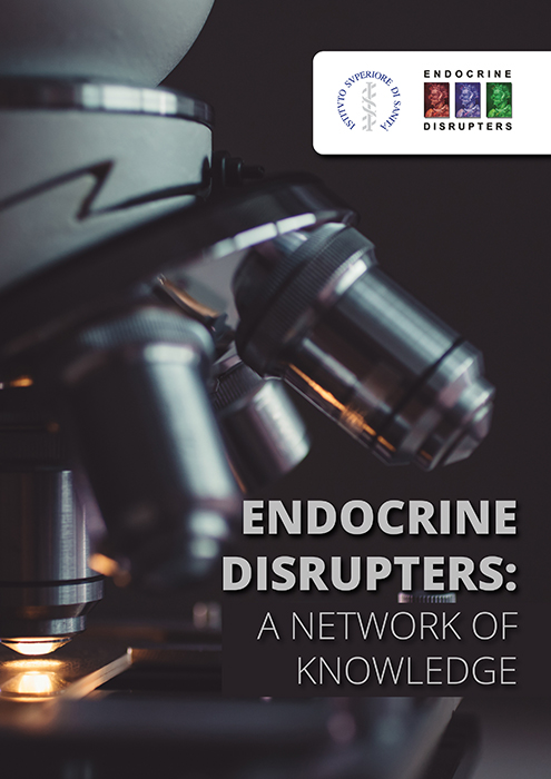 Endocrine Disrupters: A network of knowledge