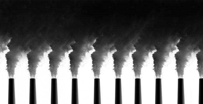 'net-zero carbon' cluster