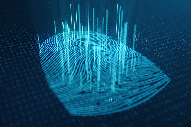 Limitless opportunities for biometric innovation