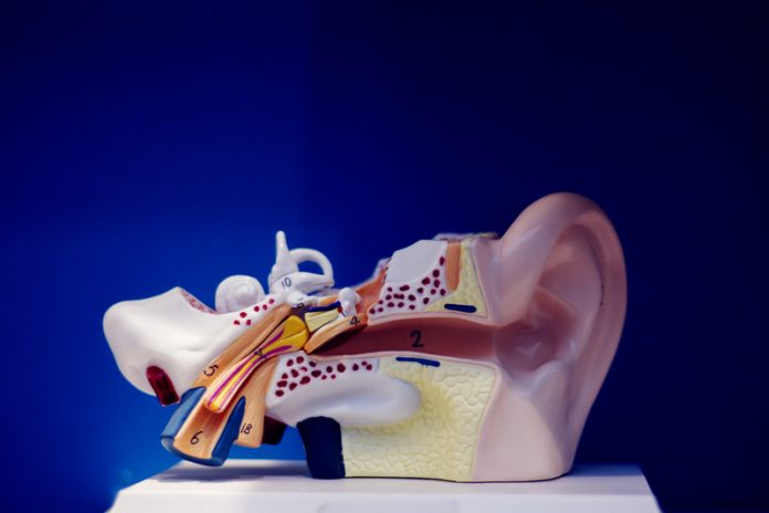 deafness, communication disorders