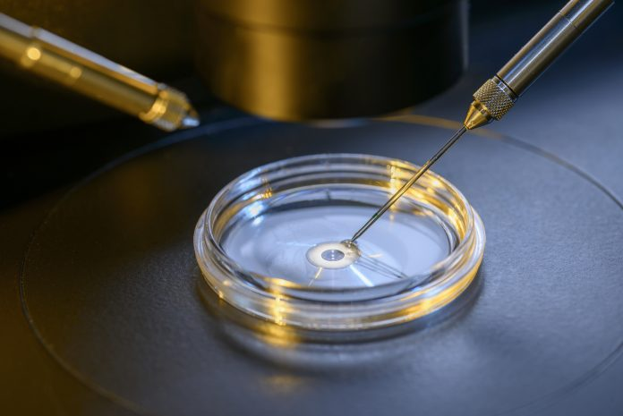 embryology research, IVF