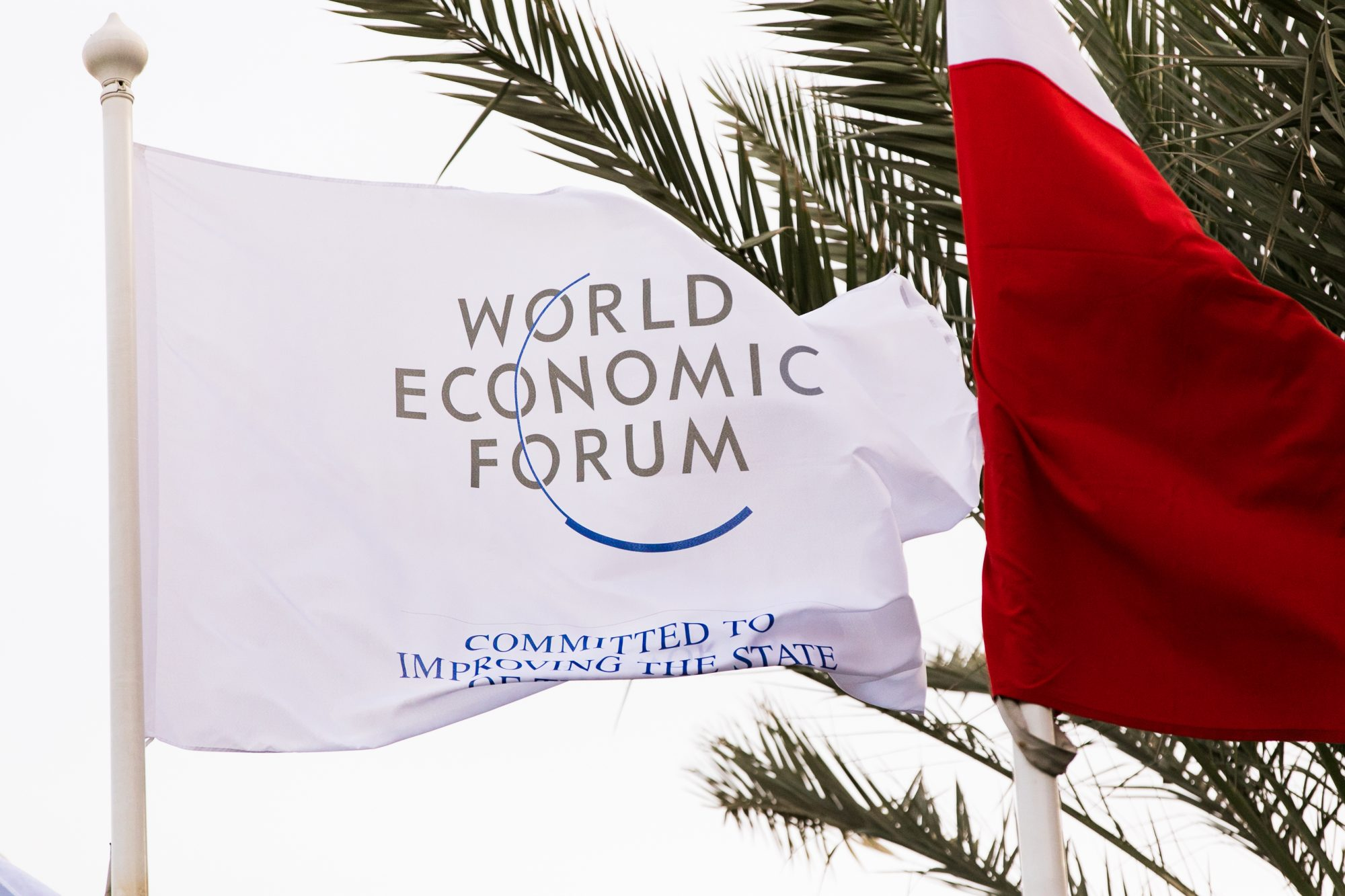 blockchain experimentation, world economic forum