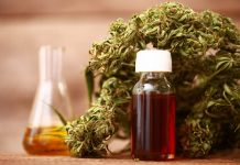 The medicinal benefits of CBD oil and medical cannabis
