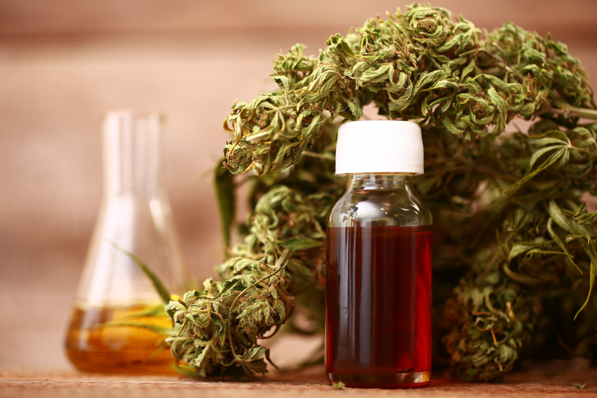 Beyond pain relief and mental health: The science behind CBD oil