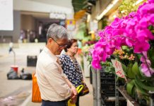 Rapidly ageing population, Hong Kong