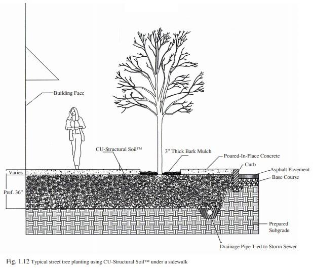 Figure 1.12 - Installing CU-Structural Soil