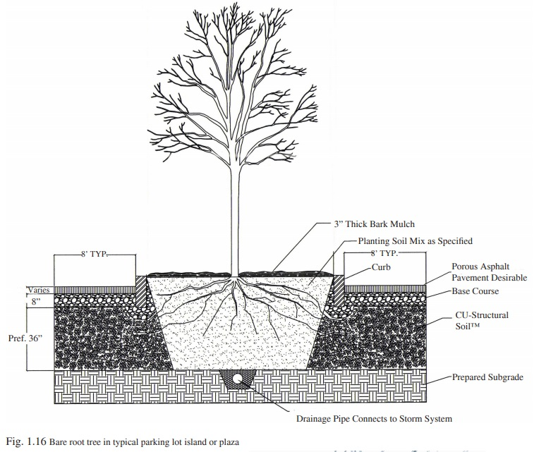Figure 1.16 - Installing CU-Structural Soil in parking lots
