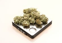 help people lose weight, Medical Marijuana