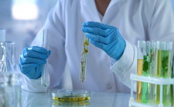 cannabinoids in medicine, oxford cannabinoid technologies, cbd oil