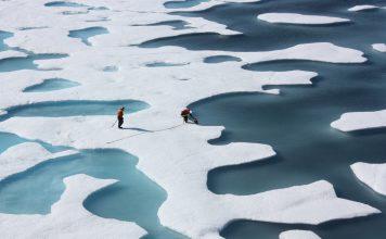 international arctic research, USARC