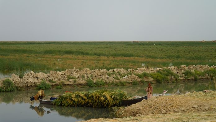 clean water in iraq, water crisis