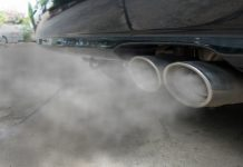 offsetting carbon emissions