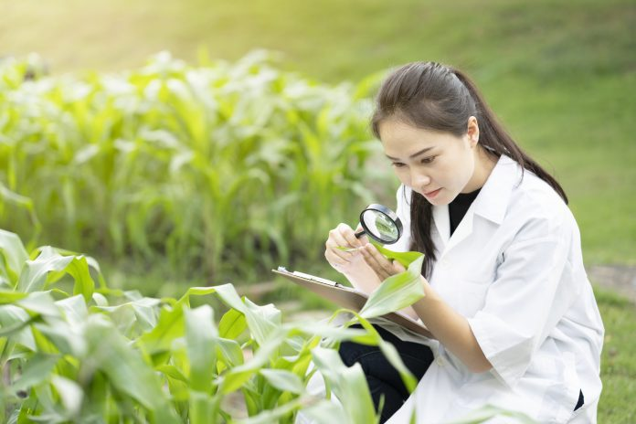 field of plant pathology