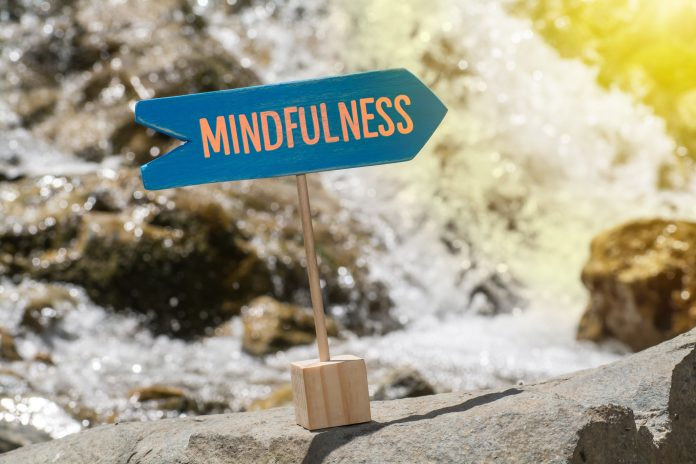 surviving brexit, mindfulness