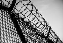 crime in prison