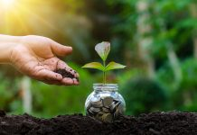transitioning to a green economy, carbon offsetting