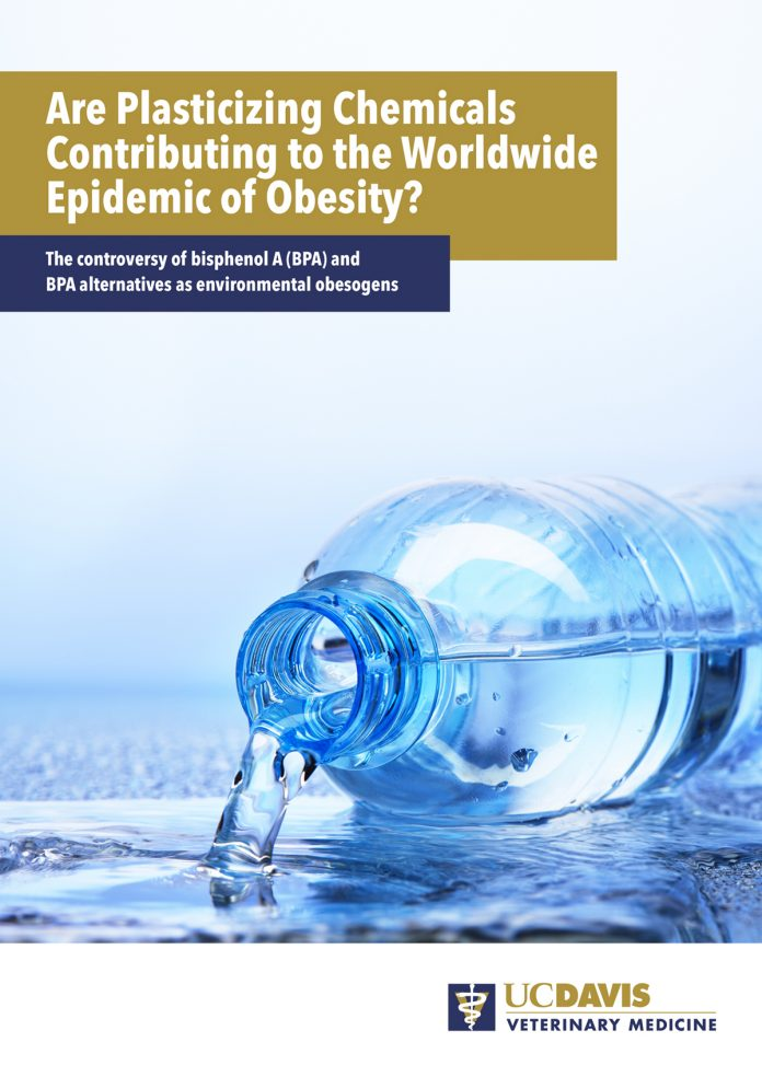 epidemic of obesity, bisphenol A