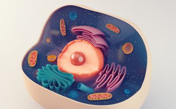 cell organelles, microfluidic isolation