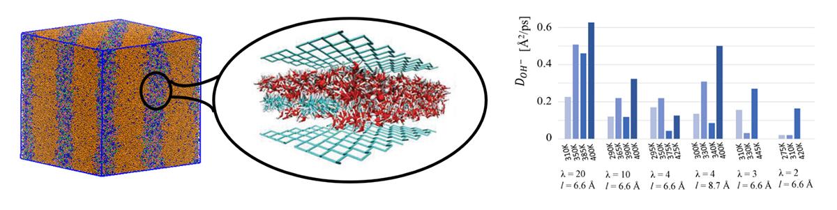 anion exchange membrane, computer simulation