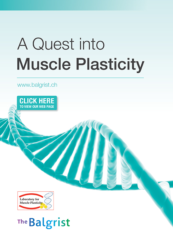 A Quest Into Muscle Plasticity