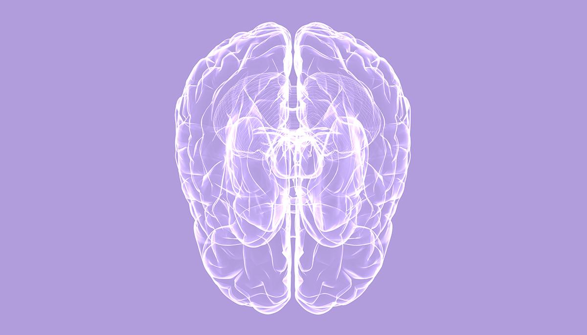 The Kappa Theory of Schizophrenia