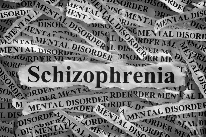 The Kappa Theory of Schizophrenia
