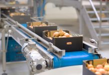 future of the food industry